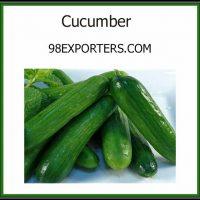 cucumber3-min