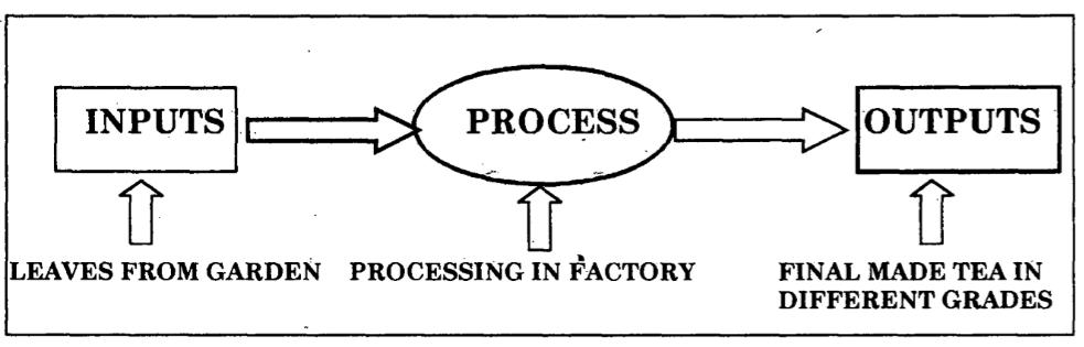 tea-production-system